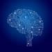 右脳を鍛える5個の方法。右脳を鍛えて暗記力、想像力をレベルアップ!